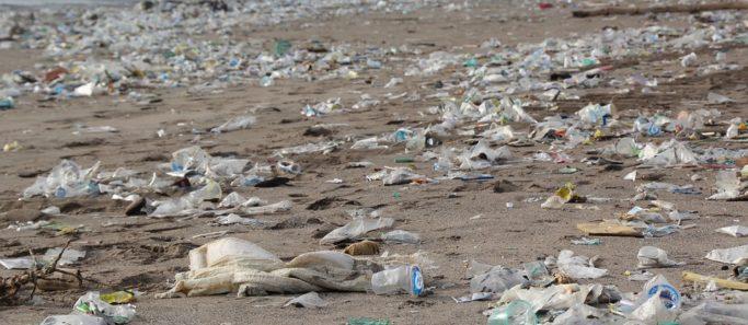 ile henderson paradis terrestre macule plastique - SocialMag