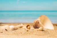 penurie sable enjeu ecologique mondial - SocialMag