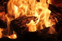 strasbourg combustion bois centrales biomasse plus polluante que diesel - SocialMag