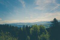 forêts tremplin emploi
